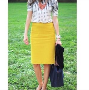 CAbi size 6 Curry Yellow Pencil Skirt Mustard #992